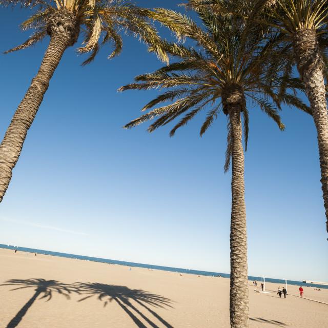 """Malvarrosa Beach, Valencia, Spain, Europe"" stock image"