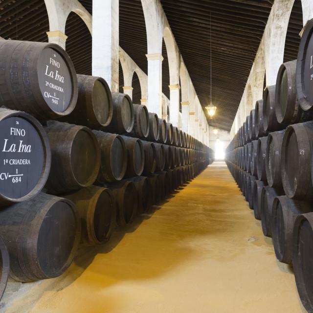 """Sherry barrels at the Lustau bodega, Jerez de la Frontera, Cadiz province,..."" stock image"