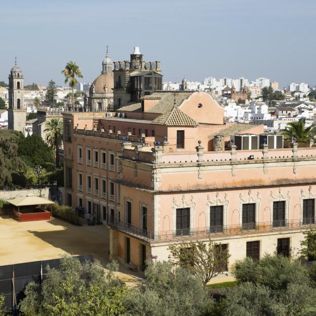 """""""Palacio de Villavicencio inside the Alcazar, Jerez de la Frontera, Cadiz..."""" stock image"""