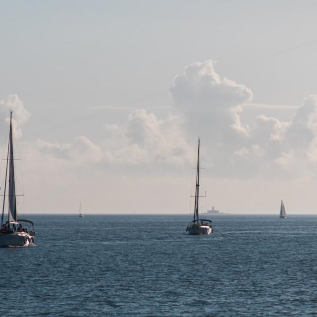 """Sailing in Lisbon"" stock image"
