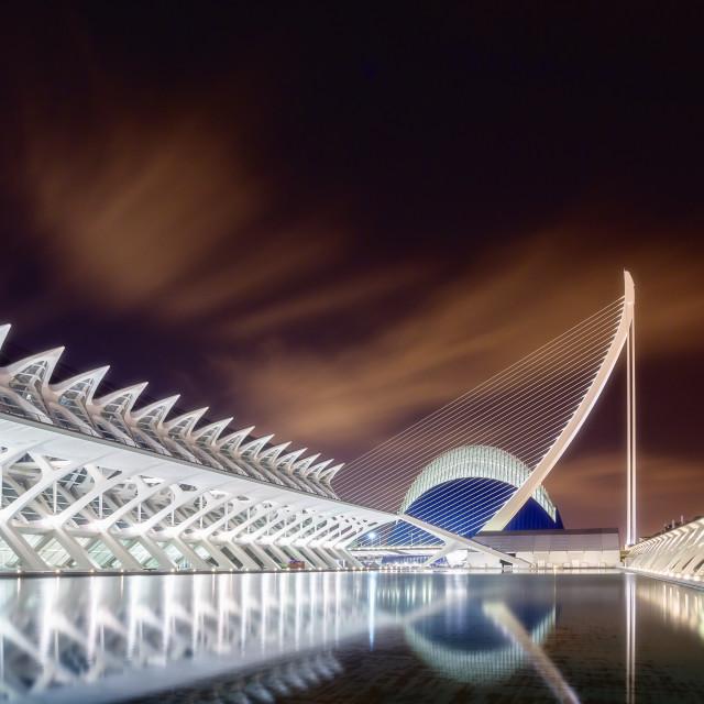 """Calatrava at night"" stock image"