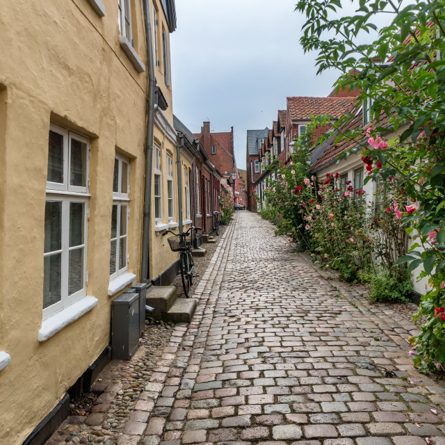 """""""Homes on cobbled streets in Ribe, Denmark"""" stock image"""