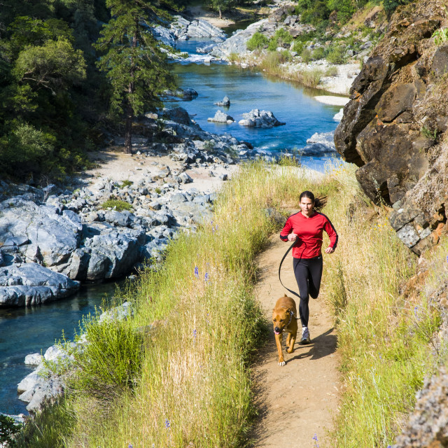 """""""Woman runs with her dog along the Yuba River"""" stock image"""