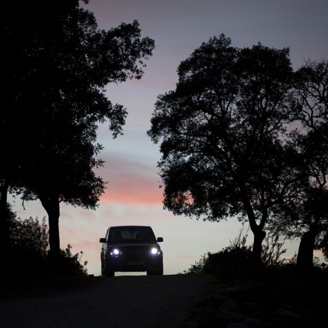 """""""A truck drives at sunset in a dirt road in Prado del Rey, Cadiz province,..."""" stock image"""