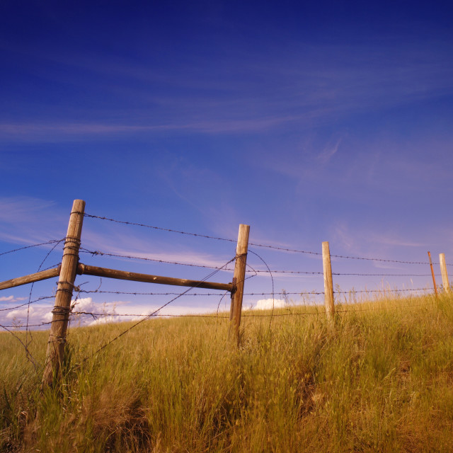 """""""Rural Landscape And Barbed Wire Fencing"""" stock image"""