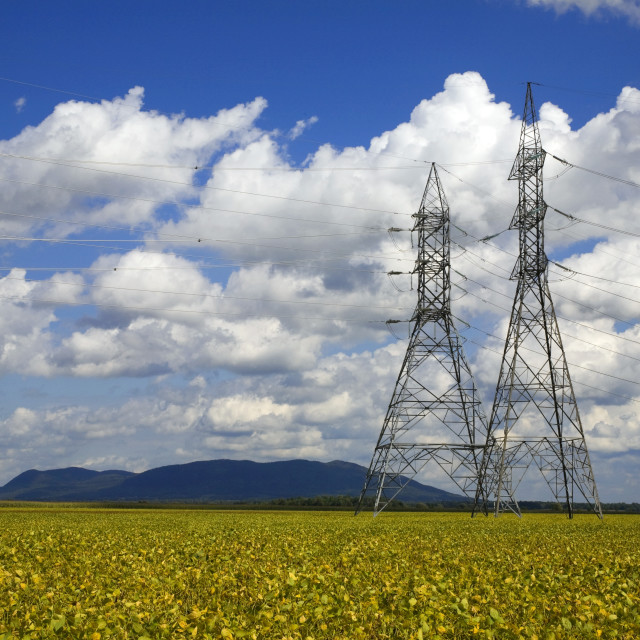 """""""Hydro Tower Over A Soya Bean Field"""" stock image"""