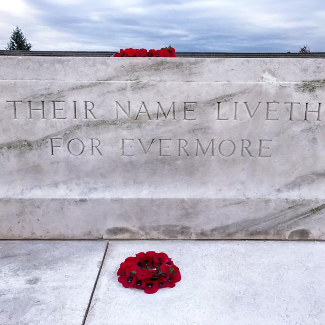 """Tyne Cot Cemetery"" stock image"