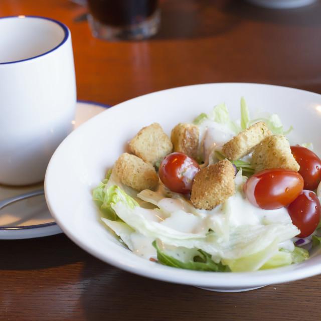 """Garden Salad"" stock image"
