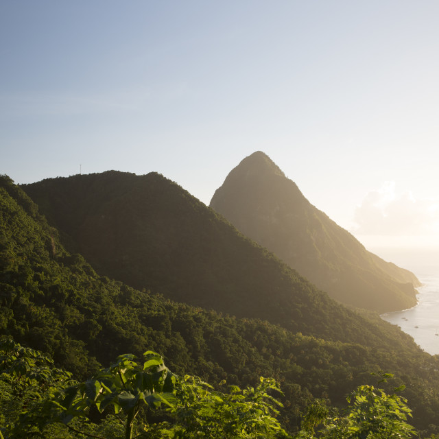 """Landscape view of Piton in Saint Lucia"" stock image"