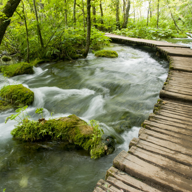 """Plitvice Lakes National Park In Croatia, Europe"" stock image"