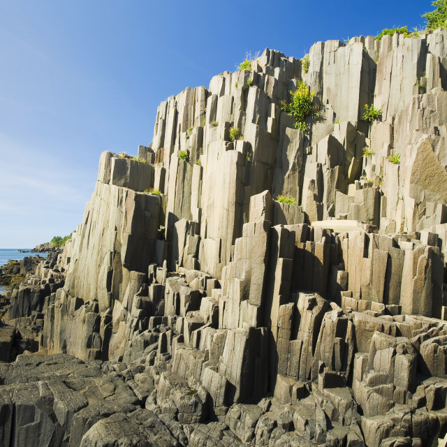 """Basalt Rock Cliffs, Brier Island, Bay Of Fundy; Nova Scotia, Canada"" stock image"