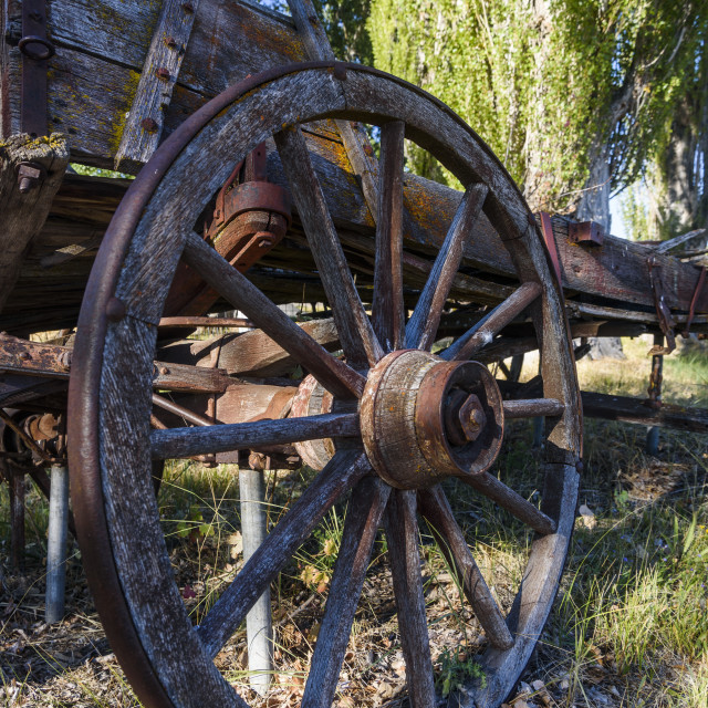 """""""Old Relics From The Past Remain In Eastern Oregon; Frenchglen, Oregon, United..."""" stock image"""