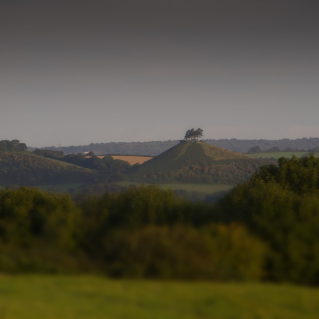 """""""Colmers Hill"""" stock image"""