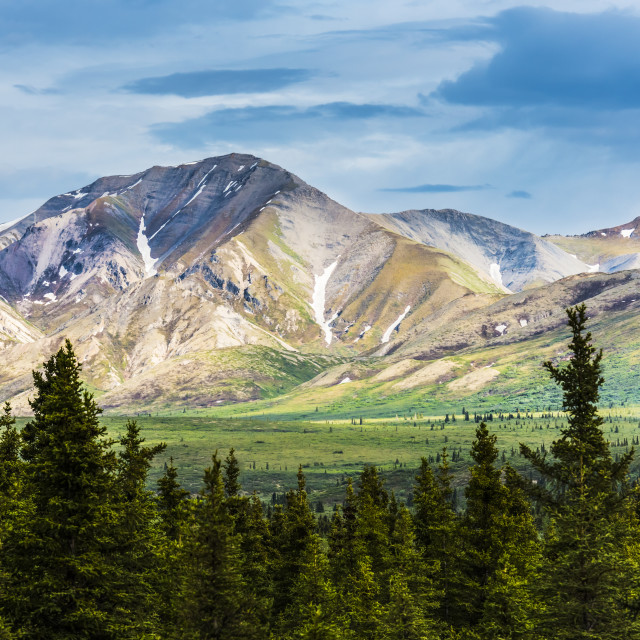 """""""A Scenic View Of The Alaska Range In Denali National Park Near The Savage..."""" stock image"""