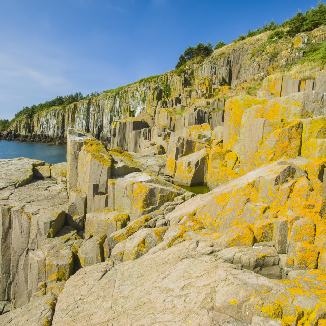 """Basalt Rock Cliffs, Bay Of Fundy; Brier Island, Nova Scotia, Canada"" stock image"