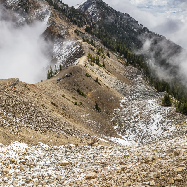 """""""The Rugged Hiking And Mountain Bike Trails At The Top Of Kicking Horse..."""" stock image"""