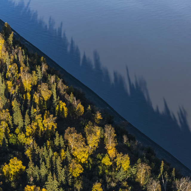 """Aerial View Of The Shore Of Cook Inlet Meeting Trees Lining The Beach At..."" stock image"