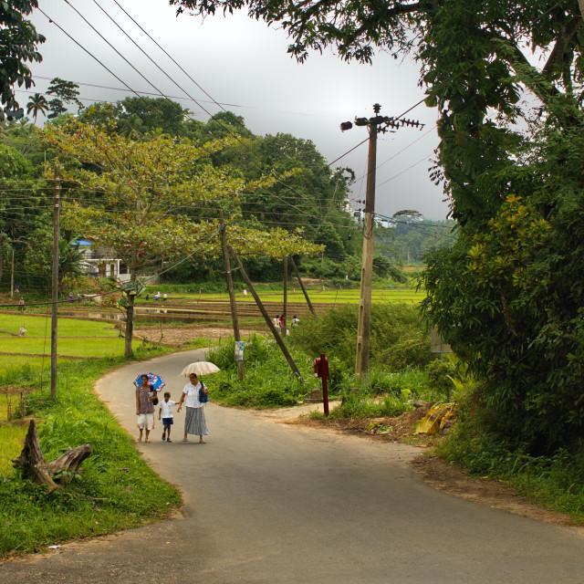 """""""Rural Sri Lanka"""" stock image"""