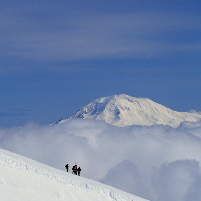 """""""Mountain Climbers, Mount Adams In Background"""" stock image"""
