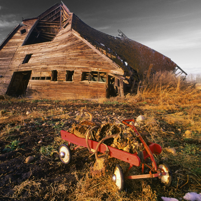 """Old Barn With Red Wagon"" stock image"