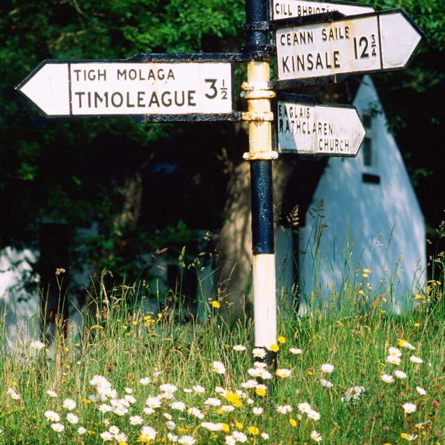 """""""Directional Signs; Co Cork, Ireland"""" stock image"""