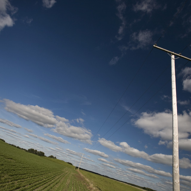 """""""Power Lines In A Prairie Field"""" stock image"""