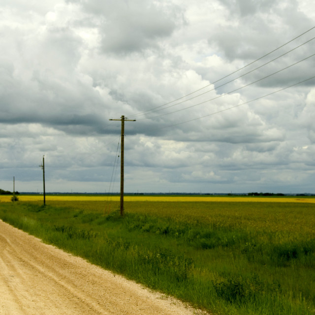 """""""Manitoba, Canada; Power Lines And Rural Road"""" stock image"""