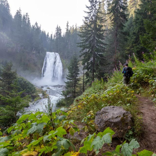 """Waterfall Hiker"" stock image"