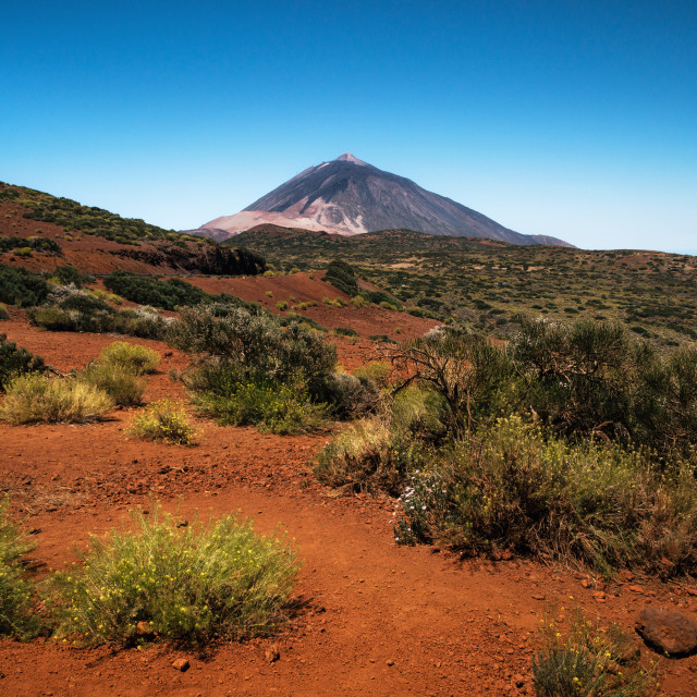 """Scenic landscape in Teide National Park, Tenerife, Canary"" stock image"