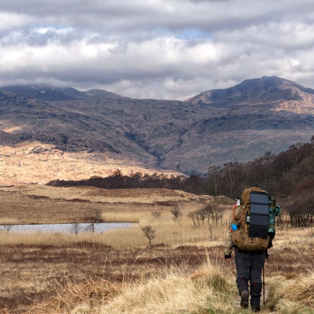 """""""West Highland Way"""" stock image"""
