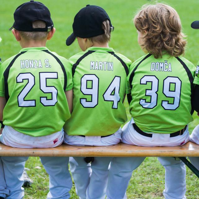 """Little baseball players 1"" stock image"