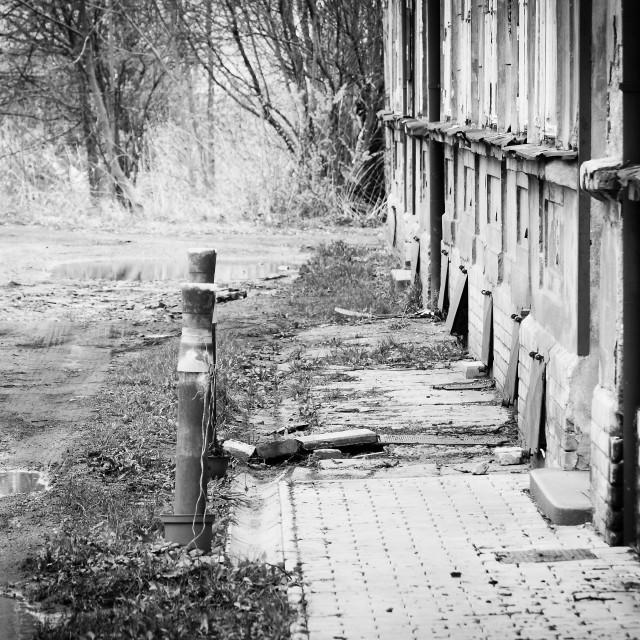 """""""Abandoned house 3"""" stock image"""