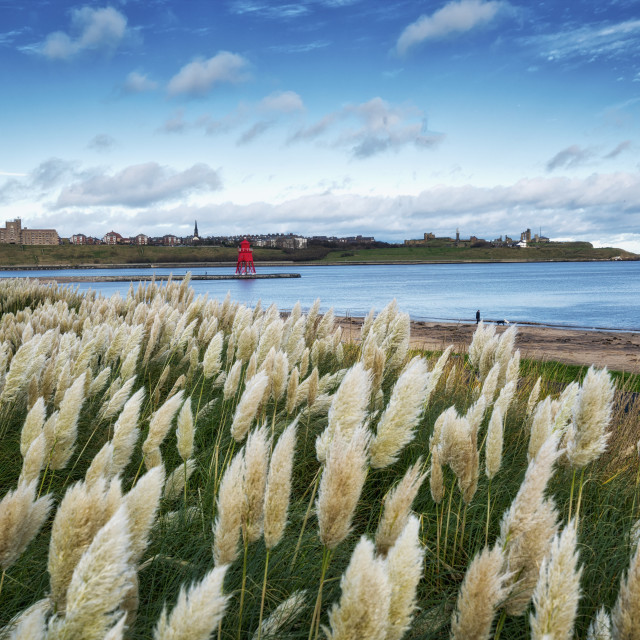 """Littlehaven Bay And Herd Groyne Lighthouse; South Shields, Tyne And Wear,..."" stock image"