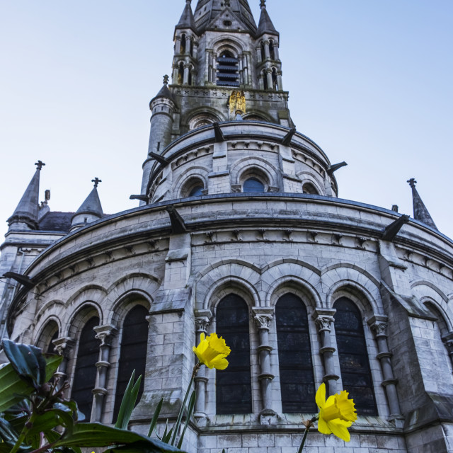"""""""Saint Fin Barre's Cathedral; Cork City, Ireland"""" stock image"""
