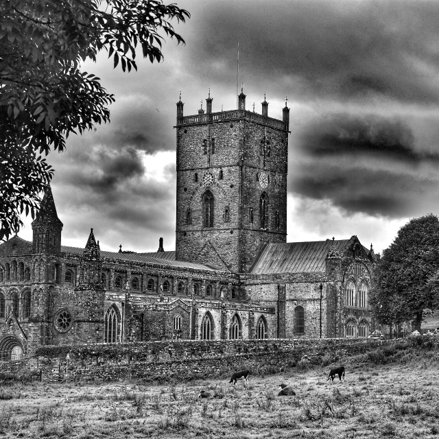 """St Davids Cathedral"" stock image"