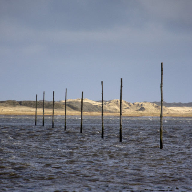 """""""Lindisfarne, England; Wooden Posts In The Water"""" stock image"""