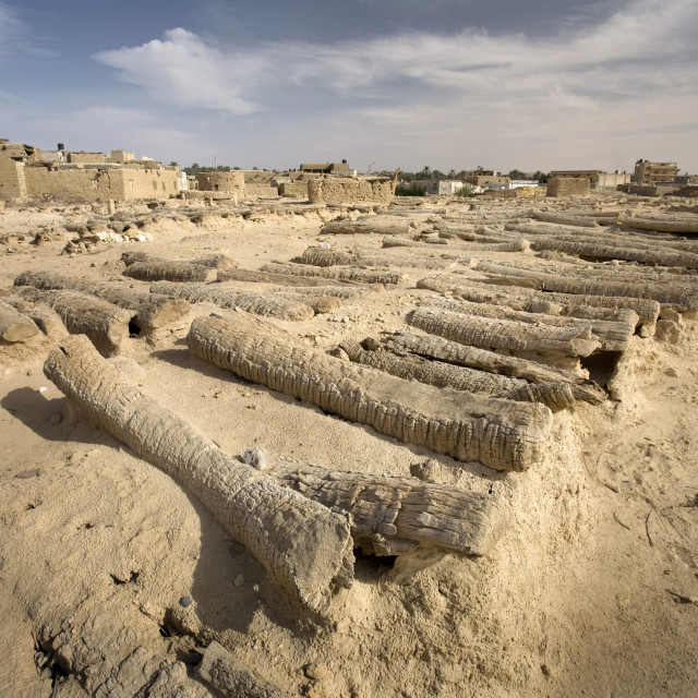 """""""Siwan Cemetery, Fortress Of Shali, Siwa Oasis, Egypt"""" stock image"""
