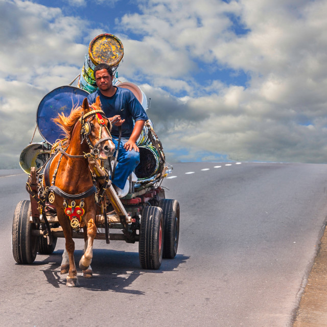 """""""Pony pulling a cart"""" stock image"""