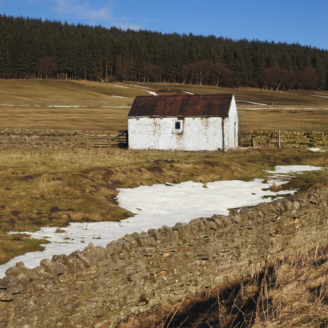 """Durham Dales, County Dales, England; A Building And Fence With Traces Of Snow..."" stock image"