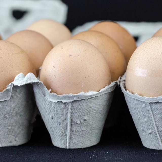 """Light brown eggs in cardboard boxes macro crop"" stock image"