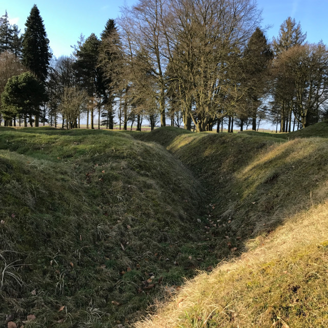 """""""Western Front Trenches"""" stock image"""