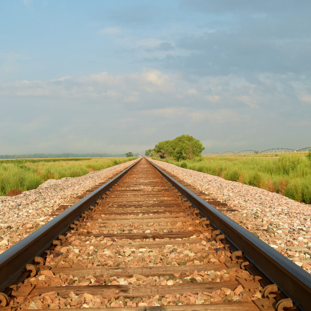 """Railway tracks running through a field disappearing into the distance."" stock image"