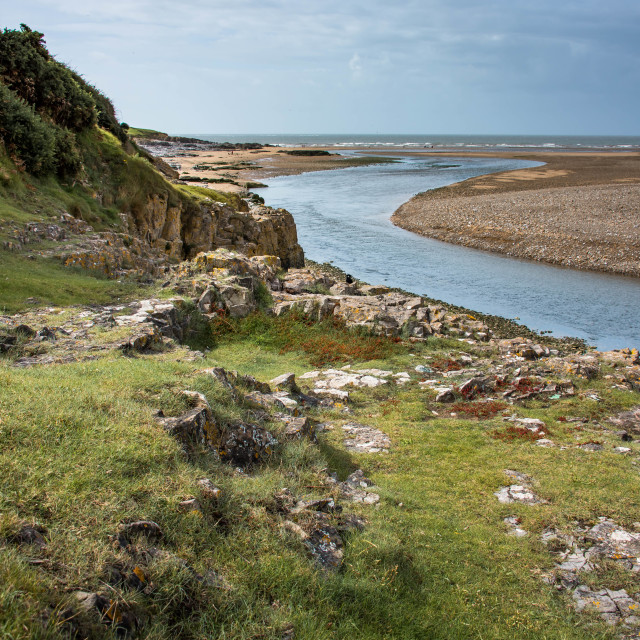 """The Estuary"" stock image"