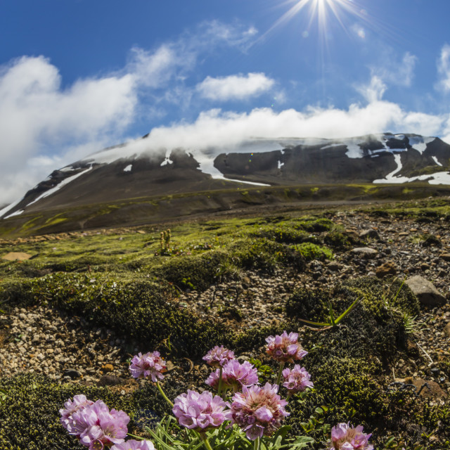 """A view of the stratovolcano Snaefellsjokull, Snaefellsnes National Park,..."" stock image"