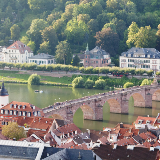 """""""Old town with Karl-Theodor Bridge (Old Bridge) and gate, Neckar River,..."""" stock image"""