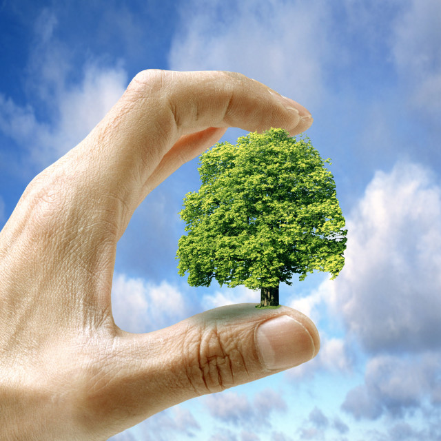 """Environmental care, conceptual image"" stock image"