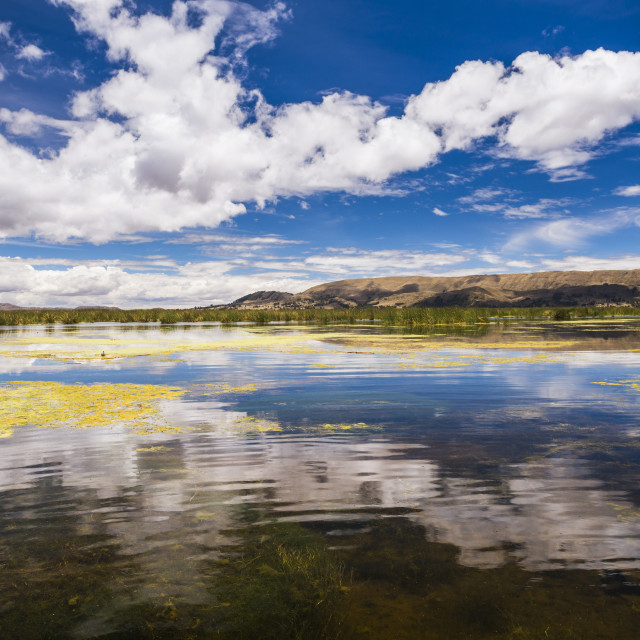 """Lake Titicaca, Puno Region, Peru"" stock image"
