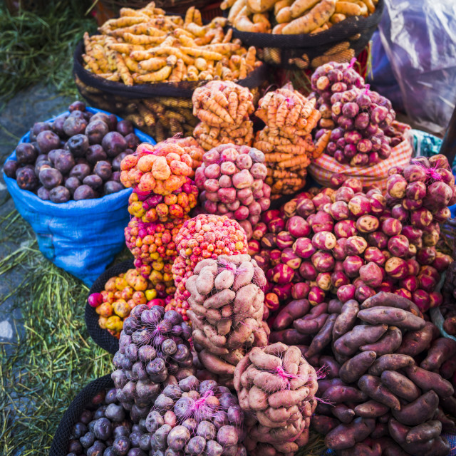 """Different potatoes for sale at a food market in La Paz, La Paz Department,..."" stock image"