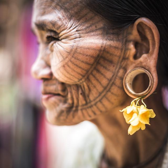 """Tattooed woman of a Chin Tribe Village, Chin State, Myanmar (Burma)"" stock image"