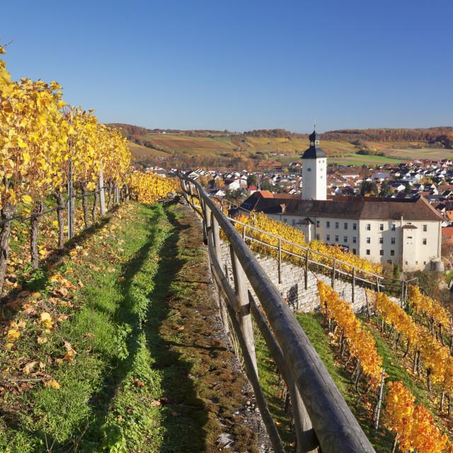 """Schloss Horneck Palace on the Neckar river, Gundelsheim, Baden-Wuerttemberg,..."" stock image"
